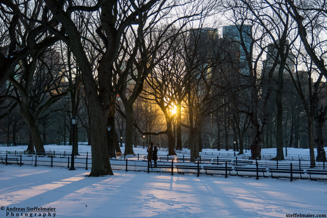 steffelmaier_central_park_snow_tn