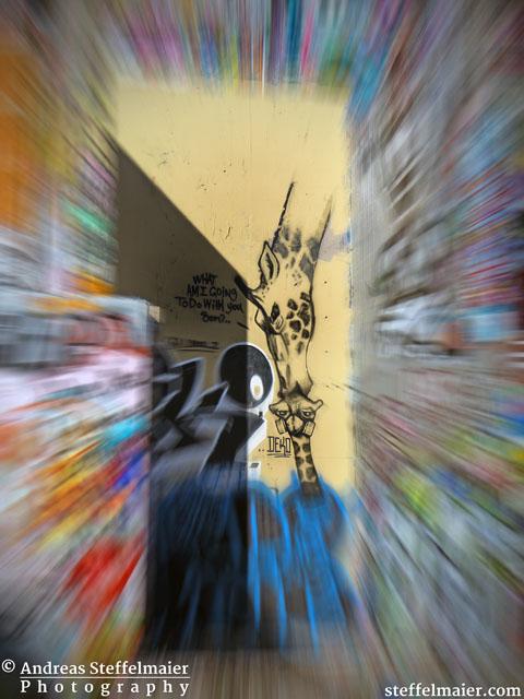 steffelmaier_graffiti_park_tn