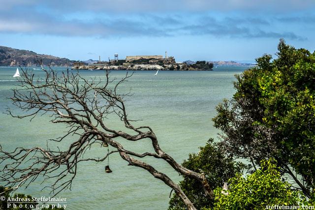 Steffelmaier Alcatraz