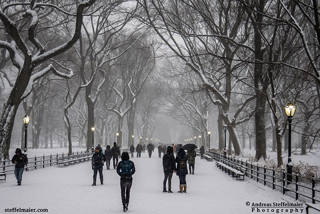 central park covered in snow andreas steffelmaier