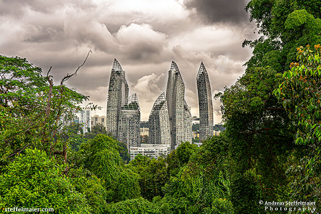 Andreas Steffelmaier Photography Keppel Bay View