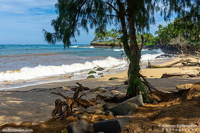 Andreas Steffelmaier Photography Paia Beach
