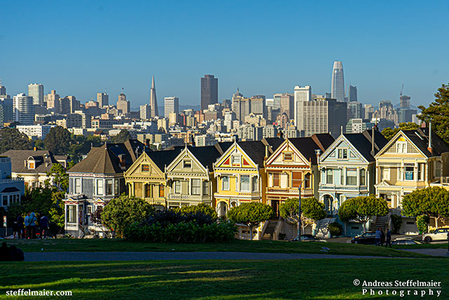 Andreas Steffelmaier Photography Painted Ladies